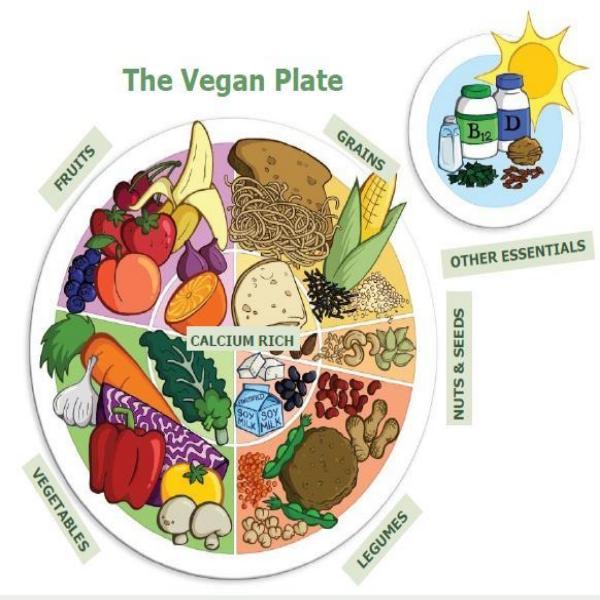 9 savjeta za vegane početnike veganski tanjur, soul food internet trgovina