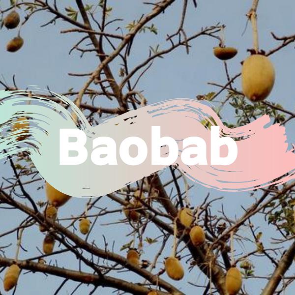 15 nevjerojatnih blagodati baobab praha, soul food internet trgovina